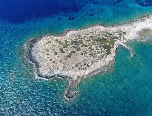 Γλάρος: Ο… δίδυμος αδερφός της Κύπρου βρίσκεται στην Ελλάδα