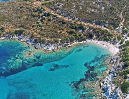 Λιανή Άμμος – Εύβοια: Η παραλία… ησυχαστήριο 2 μόλις ώρες μακριά απ' την Αθήνα…